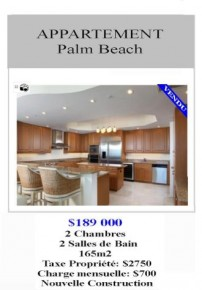 miami immobilier floride ,acheter appartement miami floride ,appartement à miami floride